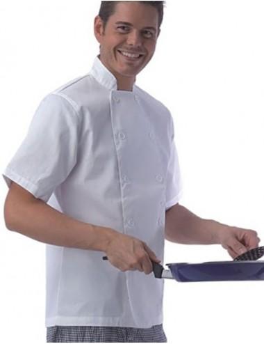 CHAQUETILLA  de cocina...